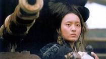 Osudy pirátky Ching Shih se staly námětem mnoha filmových snímků.