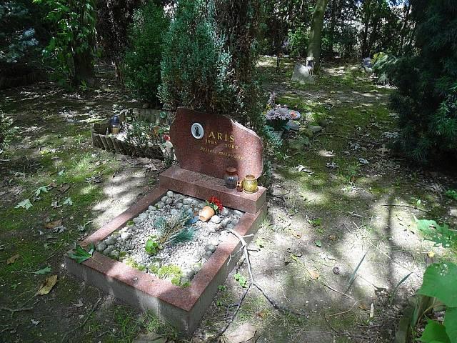 Byl založen v v roce 1909 a v původním plánu Bohnické léčebny pro choromyslné nikdy hřbitov nefiguroval