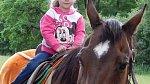 Pohled z koňského hřbetu je nejlepší terapie