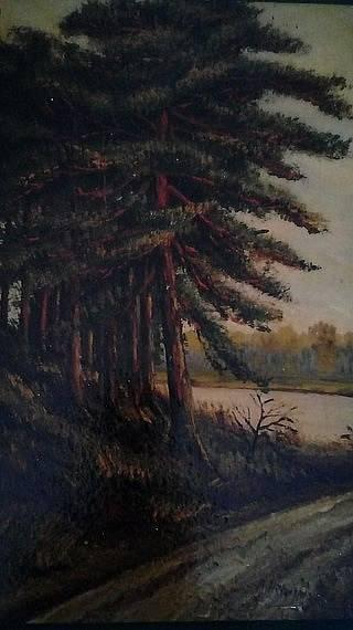 Strom u cesty, A. Hitler 1911