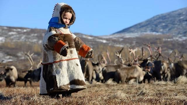 Něnci žijí při pobřeží Severního ledového oceánu od evropské části Ruska až po poloostrov Tajmyr