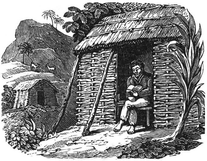 Alexander Selkirk si čte Bibli ve své chatrči na opuštěném ostrově.