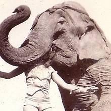 Historie cirkusu se začala psát už v antickém věku