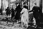Lydie se do Terezína i Osvětimi přihlásila dobrovolně.