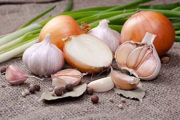 Cibule a česnek pomáhají krev zředit.