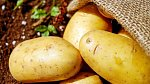 Nahraďte droždí bramborovou směsí.