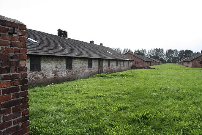 Auschwitz II-Birkenau, sektor BIIf – nemocniční tábor