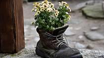 Dejte starým botám šanci na nový život.