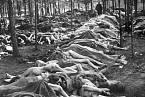 Lidé v Bergen-Belsenu umírali hromadně na tyfus.