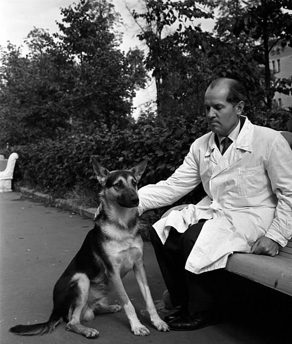 Vladimir Děmichov prováděl na psech hrůzné experimenty.