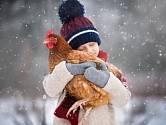 Některá plemena jsou vůči mrazům odolnější.