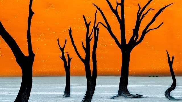 Mrtvá pláň v Namibii láká fotografy a filmaře, vznikají tam neuvěřitelné snímky