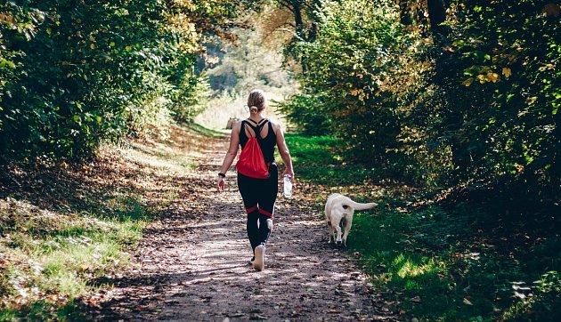 Pravidelně choďte alespoň na krátké procházky