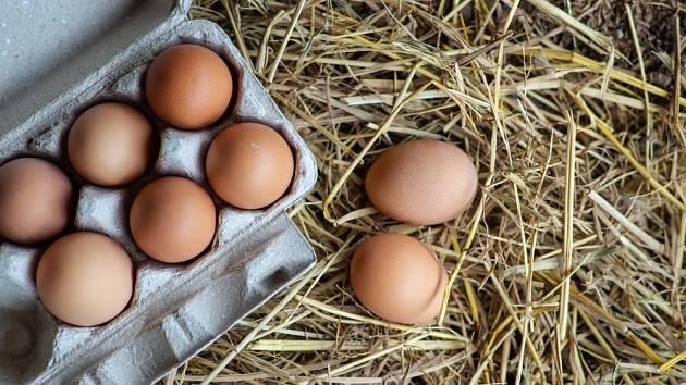 Bio vejce se od klecového liší nejen kódem.
