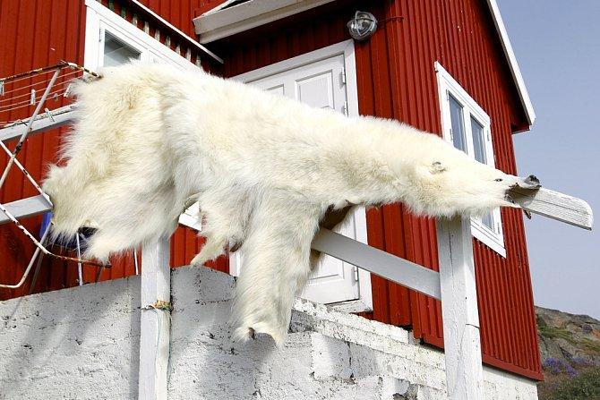 Život za polárním kruhem je krutý.