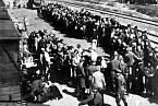 Selekce vězňů v Osvětimi.