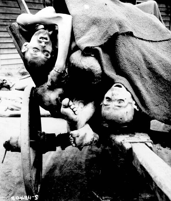 Těla některých z obětí jednoho z pobočného koncentračního tábora Mauthausenu.