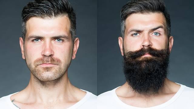 Raději dokonalé oholení nebo dokonalé vousy?