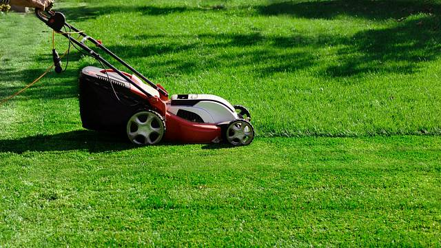 Bez sekačky se na zahradě prostě neobejdete