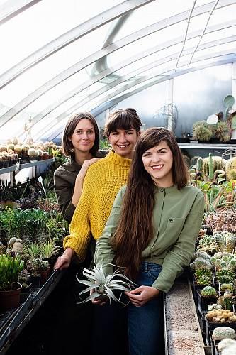 Kamarádky Rozi, Anet a Zuz provozují obchod pokojovky.co a o rostlinách napsaly už dvě knihy.