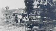 Údolí smrti u Dukelského průsmyku v roce 1946