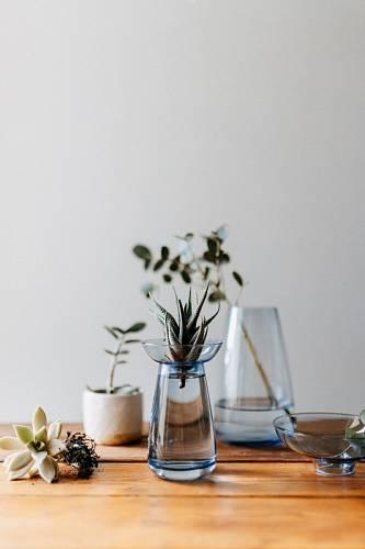 Na váze z modrého skla od japonské značky Kinto sedí miska, kterou můžete sundávat.