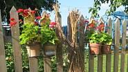Zahrada U malíře v Myslovicích je venkovskou idylou.