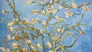 Van Gogha výrazně inspirovala rozkvetlá příroda