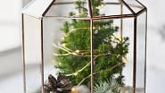 Vánoční terarium, Zahrada na niti, 3200 Kč