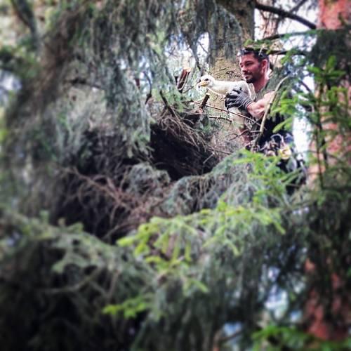 Povoláním je arborista, pečovatel o stromy, jezírka jsou koníček.