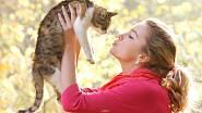 Máte raději kočky, nebo psy? Co zjistili odborníci během výzkumu?