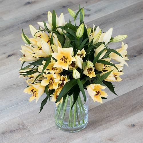 Dlouho ve váze vydrží krásné květy lilií ze Světa růží.