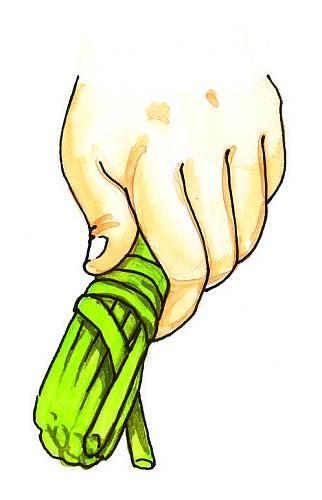 1. Konce prutů zarovnejteamezi nimi kolmo stiskněte konec tenkého proutku asi 10 cm od okraje. Ten několikrát pevně obtočte kolem prutůanakonec ho opět zatáhněte do svazku pomlázky.