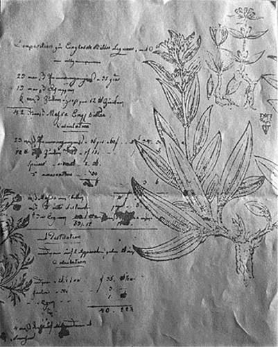 Tohle je originální receptura, kterou Becherům daroval doktor Frobrig. Říká se, že je tam dvacet bylin, mezi jinými žebříček, yzop a skořice.