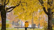 Parky noste v tradičních i netradičních barvách