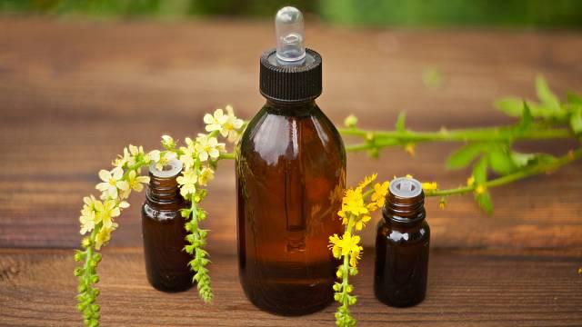 Jaké bylinky pomůžou právě vám?