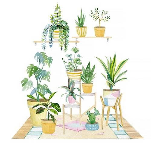 Mít plný byt pokojových rostlin není jenom módní, ale taky báječné pro pocit pohody.