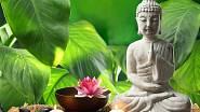 Feng-šuej je umění, jehož cílem je harmonie a spokojenost.