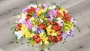 Škoda, že nemůžete přes internet cítit, jak nádherně voní kytice frézií.