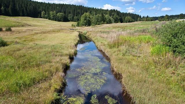 Kvildský potok na Šumavě