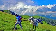 V Tušetii, což je oblast na severovýchodě Gruzie, pomáhala značit turistické trasy.