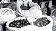 """Takhle vypadají pytle s bylinami na míchání. Nejslavnější koktejlem z becherovky je """"beton"""", její spojení s tonikem, což nebyla žádná z nouze ctnost, ale úspěšný drink z EXPO Montreal 1967."""