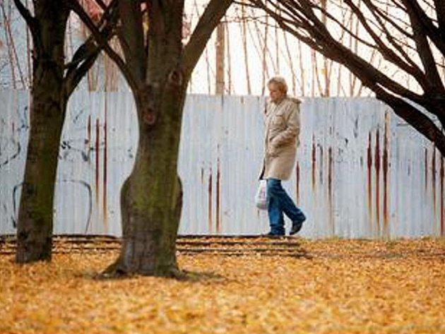 PLOTY. Město si přeje, aby soukromý plot v horní části parku zmizel. Až město park zvelebí, chce ho chránit svým plotem.