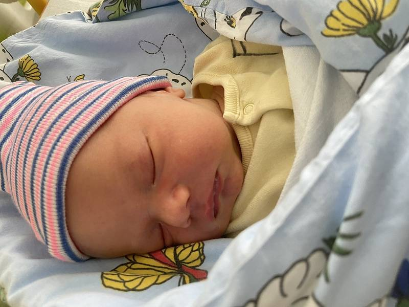 Štěpán Pícha se narodil mamince Petře Píchové z Mostu 22. května ve 12.45 hodin. Měřil 49 cm a vážil 3,08 kg.