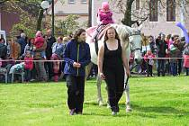 Ve Voigtových sadech se letos konala i část Valdštejnských slavností.