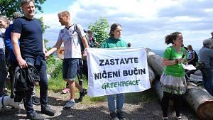 Protest proti kácení buků u Jezeří v neděli 13. června.