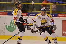 Litvínov hostil v severočeském derby liberecké Tygry.