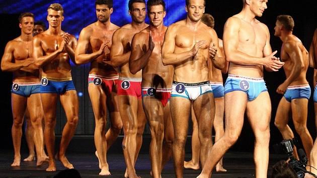 Tito muži ze soutěže Muž roku 2013 by se v létě v MHD na Mostecku nesvezli. Dopravní podnik zpřísnil podmínky přepravy a omezuje volbu oblečení pro cestování.
