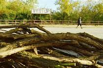 Chodec míjí větve z pokácených dřevin na mosteckém autobusovém nádraží, které se začalo uklízet a má vypadat lépe.