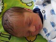 Michael Horváth se narodil 27. srpna 2017 v 5.30 hodin mamince Daniele Tonkové z Obrnic. Měřil 48 cm a vážil 2,7 kilogramu.